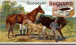 CHROMO CHOCOLAT SUCHARD   AU DRESSAGE - Suchard