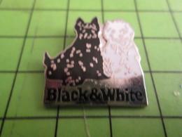 610d Pin's Pins / Beau Et Rare / THEME ANIMAUX : WHISKY BLACK & WHITE 2 CHIENS BLANC ET NOIR - Beverages
