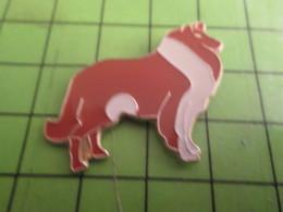 710a Pin's Pins / Beau Et Rare / THEME ANIMAUX : CHIEN BLANC ET ROUX COLLEY NOM LASSIE Prénom Phyllis ? - Animals