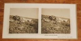 Photo Ancienne Stéréoscopique. Avion Ennemi Abattu. Guerre 1914 1918. - Aviation