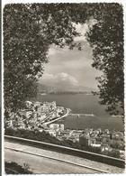 W454 Monaco - Monte Carlo Montecarlo - Vue à Travers Les Oliviers / Viaggiata 1962 - Monaco