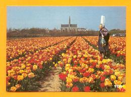CPM FRANCE 29  ~  SAINT-JEAN-DE-TROLIMONT  ~  9415  Tulipes Devant La Chapelle De N.-D. De Tronoen  ( Caoudal ) - Saint-Jean-Trolimon