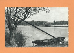 """CPSM -  Condé Folie   -  (Somme ) - Etangs De Folie """"Le Pastis """"  -( étang ) - France"""