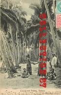 SAMOA ☺♥♥ COCOA NUTS PALM < CACAO - FEMMES Aux SEINS NUS - NU  NUDE - Samoa