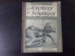 """Revue """" Sciences Et Voyages """" N° 491, 1929,"""" La Caricaturale Silhouette D'un Perroquet Sortant De L'oeuf """" - 1900 - 1949"""