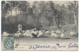 40 - Arjuzanx - Echassier Landais Gardant Ses Brebis -  Belle CPA 1900 - France