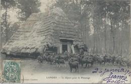 40 - Landes - Arjuzanx - Départ Des Chèvres Pour Le Pâturage - Belle CPA 1900 - France