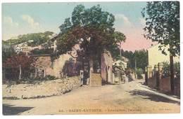 Cpa Saint Antoine - Verduron, L'entrée - France