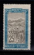 Madagascar - YV 101 N** Filanzane Cote 4,25 Euros +50% - Madagascar (1889-1960)