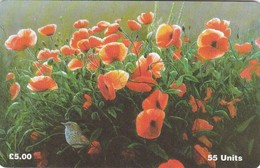 Isle Of Man, MAN 122, Poppies, Flowers, Bird, 2 Scans. - Isla De Man