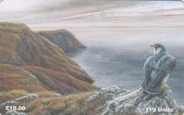 Isle Of Man, MAN 116, Peregrine Falcon, Bird, 2 Scans. - Isla De Man