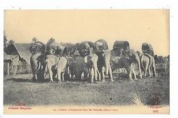 LAOS -  Convoi D'éléphants Chez Les Boloven (Haut-Laos)     ##  RARE  ##    -   L 1 - Laos