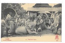 LAOS -  Eléphants Au Repos)     ##  RARE  ##    -   L 1 - Laos