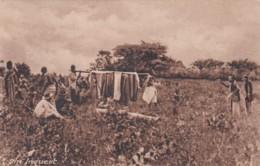 ANGOLA -  AN INQUEST - Angola