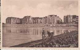 Knooke-Zoute - De Zeedijk - La Digue - Circulé En 1953 - Animée - TBE - Knokke