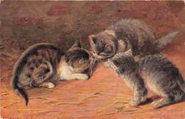 CPA Fantaisie - Illustrateur - Chat - Cat - Chats - Illustratoren & Fotografen