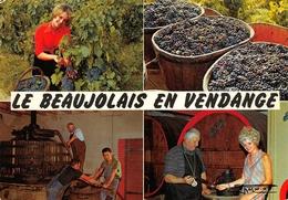 Le Beaujolais Vin Moisy 222 - Other Municipalities