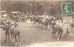 Dépt 89 - SAINT-FARGEAU - Chasse à Courre En Forêt De Saint-Fargeau - Le Rendez-vous Aux Arbres-Verts - Saint Fargeau