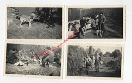 CHASSE En 1955 , 1956 Et 1959- Diverses Photos De Chasseurs-chiens-pique Nique-forêt D'Avaise Et Villars - Fotos
