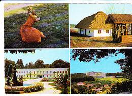BAD RARZMANNSDORF (Autriche), Station Thermale, Hôtel, Vieille Ferme Au Toit De Chaume, Cerf, Ed. Kellner Wien 1970 Envi - Oberwart