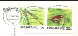 Insects  2 Stamps  Val. 5c And 25 C  On Postcard Singapore 1987 - Singapore (1959-...)