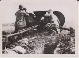 RUMANISCHE PAK VOR STALINGRAD 1942     FOTO DE PRESSE - Guerre, Militaire