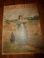 édit. Origine 1895 Rare Plaque Publicitaire Du FIGARO ILLUSTRÉ 52cm X 32cm :Litho: Dans Les Blés, Signé Outin - Targhe Di Cartone