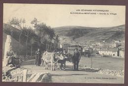 Saint-Cirgues-en-Montagne Village Animé Attelage Boeufs  * ARDECHE 07510  * Saint Cirgues En Montagne Canton De Thueyts - France