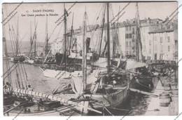RARE CPA SAINT-TROPEZ (83) : Les Quais Pendant La Récolte - Saint-Tropez