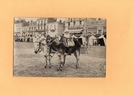Carte Postale - ANES - ENFANTS - Donkeys