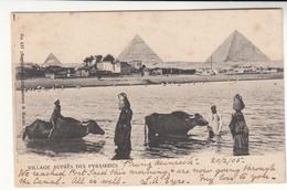 Germany / Deutsche Seepost / Egypt Postcards / Holland - Allemagne