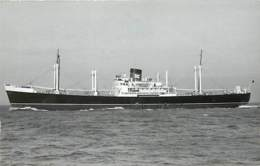 PHOTO BATEAU LE LIMERICK DE 1952 CATEGORIE 6443T . FORMAT CARTE POSTALE N° B 509 - Boats