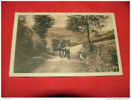 AUBY   - VRESSE SUR SEMOIS  -  La Route Vers La Semois  -  (2 Scans) - Bertrix
