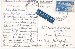 Lebanon-Liban Post/card DHOUR AL CHOUER To Egypt,verso Cedars View-fine Condit.Red. Price - SKRILL PAYMENT ONLY - Lebanon