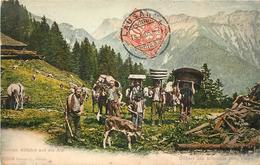 DÉPART DES ARMAILLIS Pour L'Alpe. - BE Berne