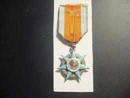 """Médaille : """"Mérite Social"""" - Ministère Du Travail - Francia"""