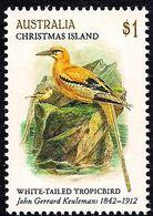 Christmas Island 2018 - Bird - White Tailed Tropicbird - Christmas Island