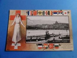SUISSE 138 CPA VERS 1900 TOUTES REGIONS Dont COLLECTION CROIX ROUGE à VOIR !!!! - Suisse