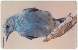 BRASIL G-282 Magnetic - Animal, Bird - Used - Brasilien