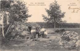 41 - LOIR ET CHER / Divers - 412998 - Exploitation D'une Sapinière - Beau Cliché - Autres Communes