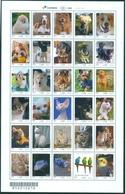 BRAZIL 2018  -  DOMESTIC ANIMALS - BIRDS , DOGS M CATS - Full Sheet 30 Stamps  - MINT - Brasil