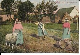 PAYSAGE ARDENNAIS  (TRAVAIL FERME ) - Agriculture