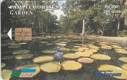 Mauritius - Pamplemousses Garden - Mauritius