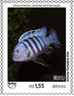 BRAZIL Stamp Brazilian Animal Fish Peixe Pece 2018 - Brasil
