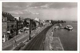 RÜDESHEIM Am Rhein, Rheinpromenade (1951) AK - Ruedesheim A. Rh.