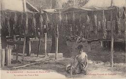 Cambodge La Culture Des Vers à Soie Pnom Penh - Cambodia