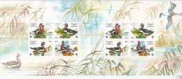 1998 Ukraine WWF Ducks Sheet Of 2 Blocks Of 4 MNH - Ongebruikt