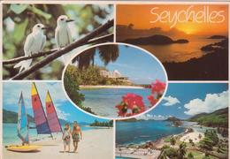 °°° Cartolina Seychelles Viaggiata °°° - Seychelles