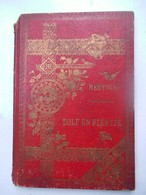OUD Boekje  Door ANTOON  HERTOGHS   7  Illustratie's Door  F Gailliard 1896 - Anciens