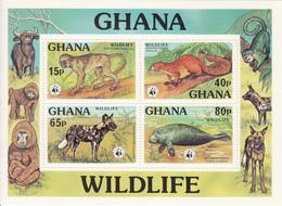 1977 Ghana WWF Colobus, Squirrel, Wild Dog Dugong Souvenir Sheet Of 4 MNH - Ongebruikt